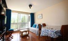location appartement résidence le plaine alpe